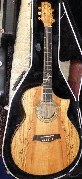 Ibanez EW50  SME Electro Acoustic Cutaway  £350