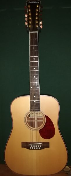 Freshman FA 250 D12 Acoustic £395
