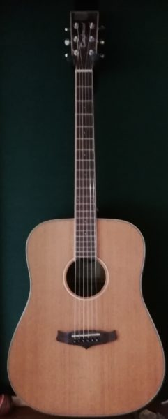 Tanglewood Evolution TW28